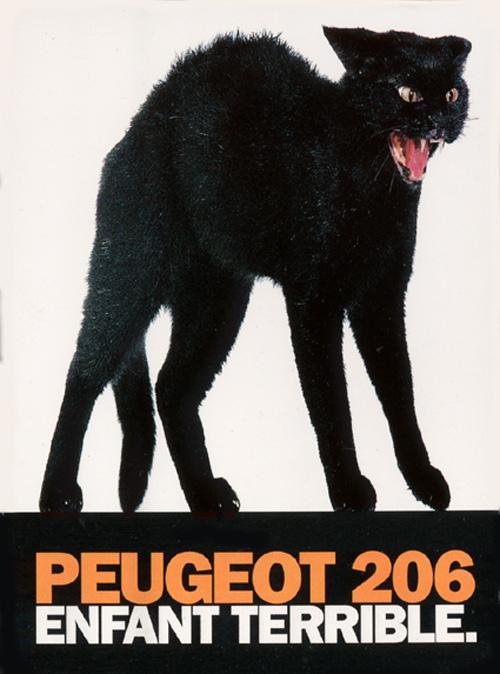 Peugeot206-gatto